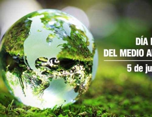 """Se celebra el Día Mundial del Medio Ambiente, cuyo lema es """"Sin contaminación por plástico"""""""