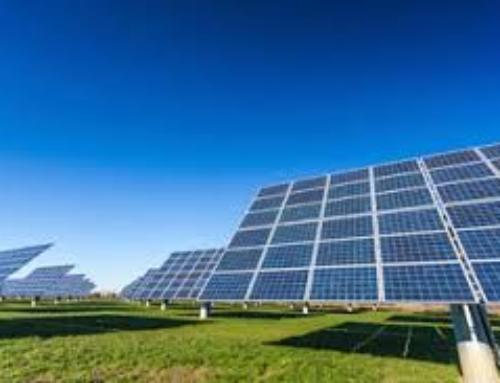 EMPLEO. Se necesitan 200 personas para trabajar en la planta fotovoltaica de OPDEnergy en Mérida.