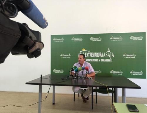 APAG Extremadura Asaja alerta de la caída de los precios de la uva y la falta de mano de obra para la vendimia