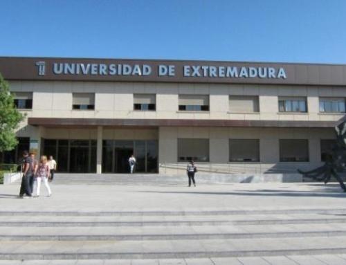 El Gobierno da el visto bueno a las universidades para finalizar el curso online