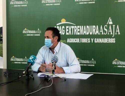 APAG Extremadura Asaja exige a la Junta que se autorice la quema controlada de rastrojos en el campo